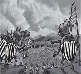 Ilustrace Ondřeje Sekory v knize O zlém brouku Bramborouku